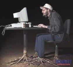 Веб-программисты